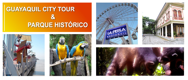 TOURS FULL DAYS